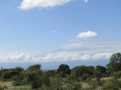 Der Kilimanjaro